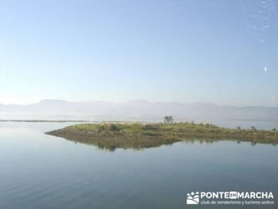 Marismas de Santoña (visita Ornitológica); escapadas alrededor de madrid